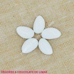 Dragées Amande AVOLA DAUPHINE Blanc Brillant 1KG