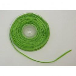 Raphia Vert Rouleau 25m